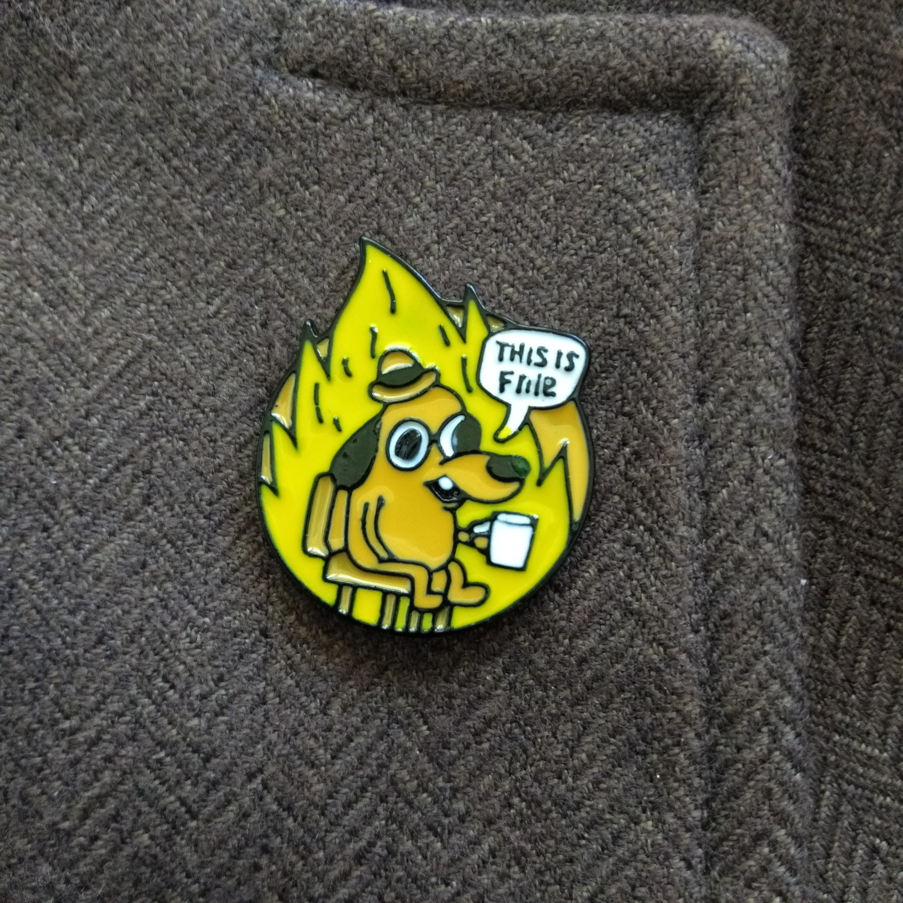 this is fine pin
